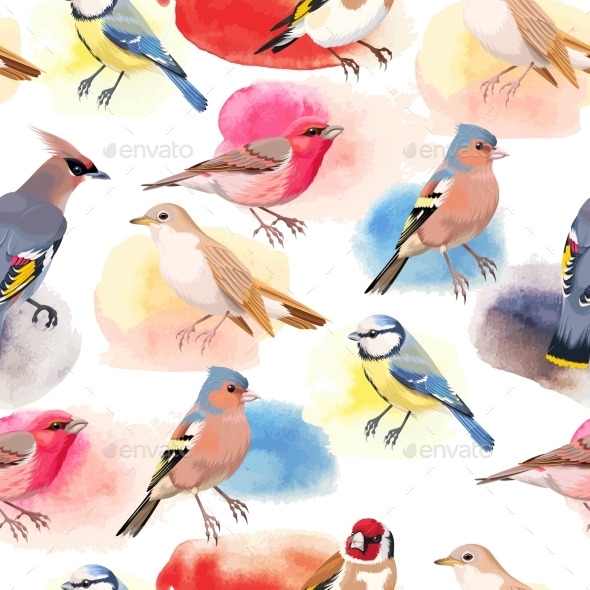 Colorful Songbirds Seamless - Patterns Decorative