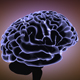 Fast Brain Activity - VideoHive Item for Sale