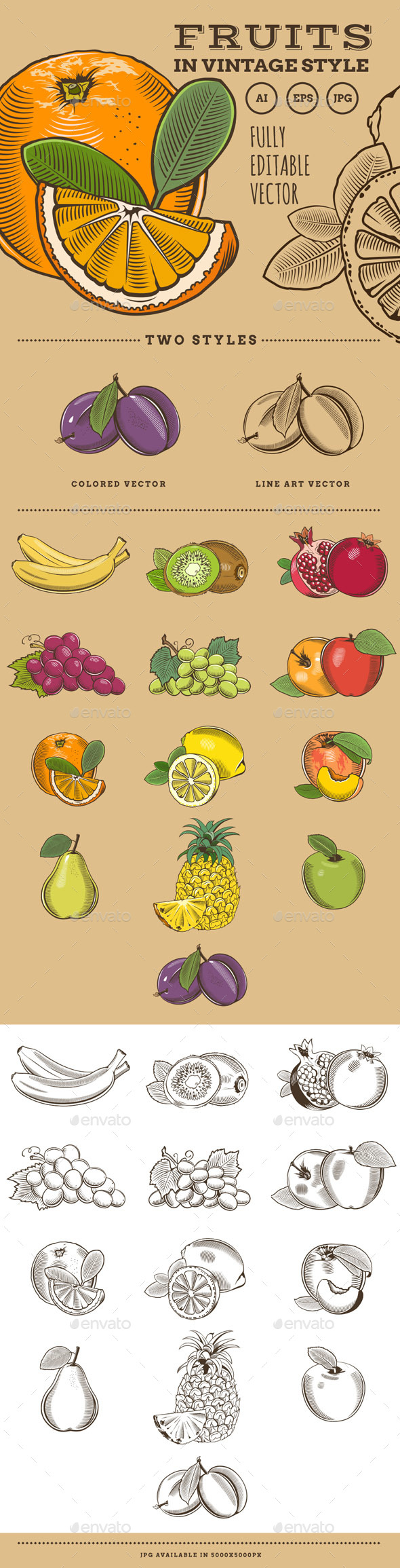 Fruits in Vintage Style - Food Objects