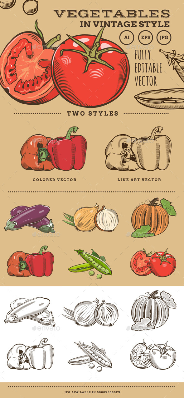Vegetables in Vintage Style - Food Objects
