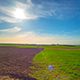 Spring Field And The Sun - VideoHive Item for Sale