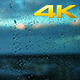 Raindrops on a Window. - VideoHive Item for Sale