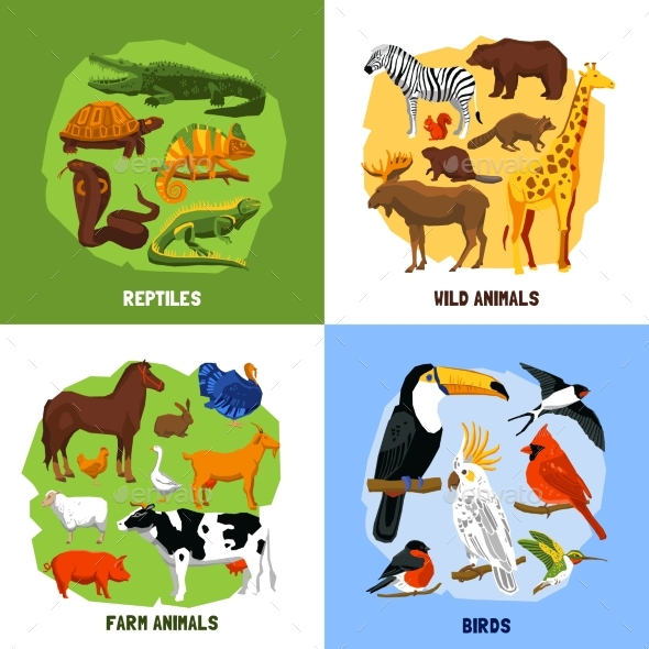Cartoon 2X2 Zoo Images - Animals Characters
