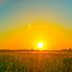 Sunset Over The Field - VideoHive Item for Sale