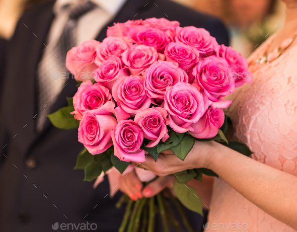 bouquet of pink roses - Stock Photo - Images