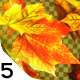 Falling Leaves Overlays - VideoHive Item for Sale