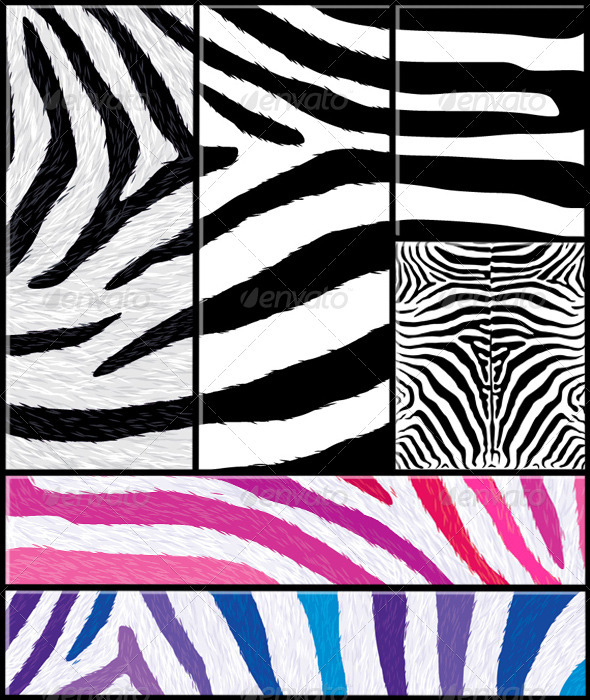 Zebra Pattern Set with Variations - Patterns Decorative