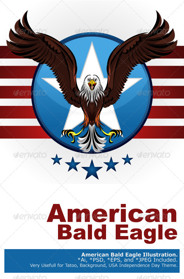 American Bald Eagle - Animals Characters