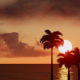 Ocean with Palm Trees at Sunset - VideoHive Item for Sale