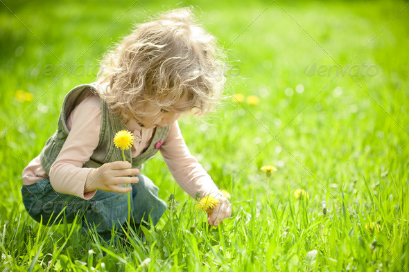 Beautiful child picks flowers - Stock Photo - Images