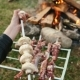 People Do Barbecue At The Nature - VideoHive Item for Sale