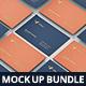 Business Card Mock-Up Bundle