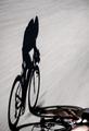 Speedy shadow - PhotoDune Item for Sale