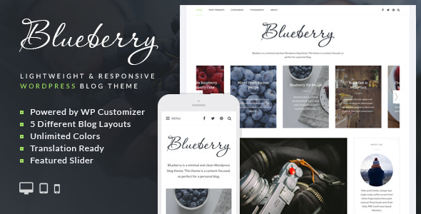 Blueberry – A Responsive WordPress Blog Theme
