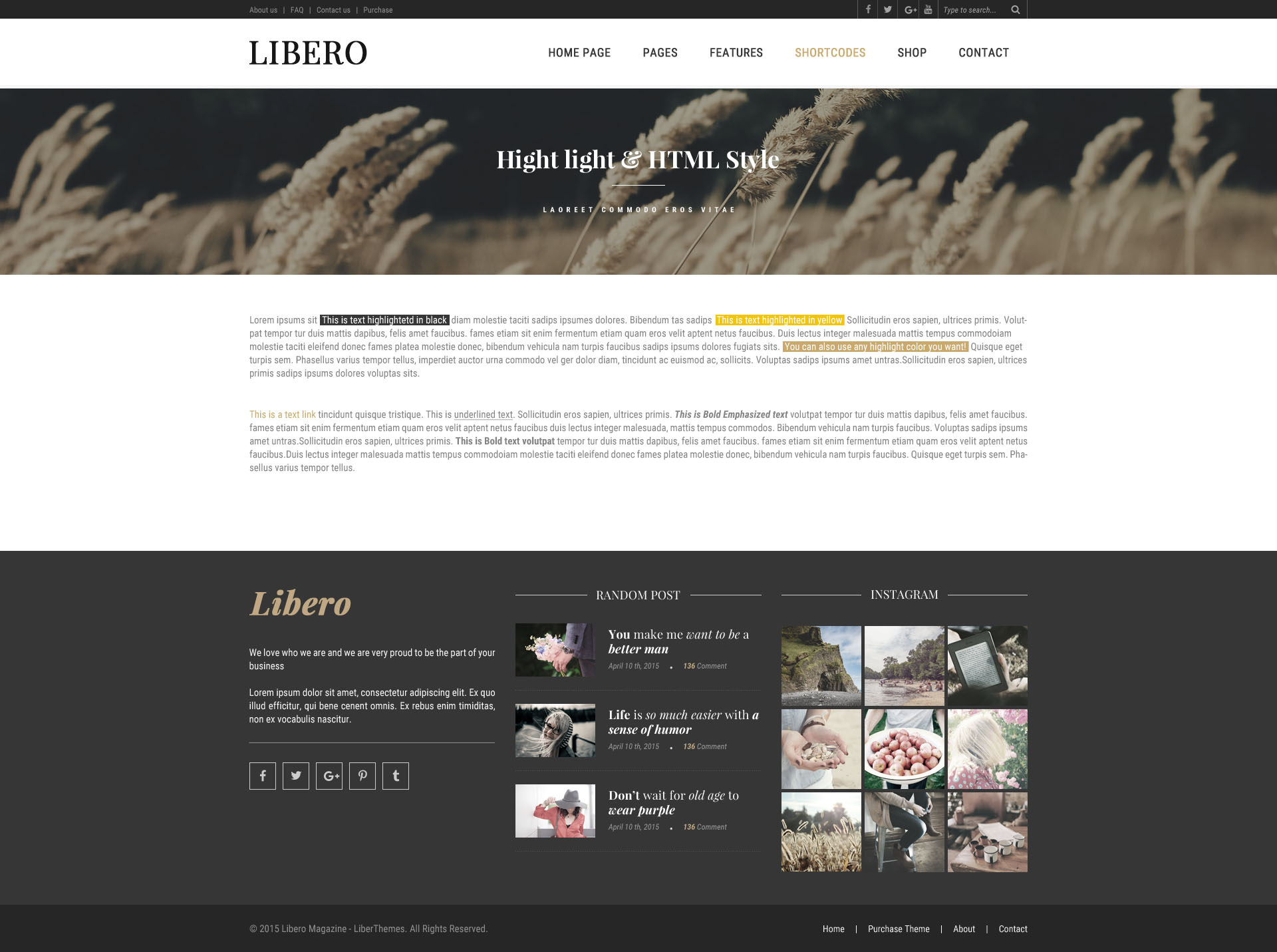 Lovely Blog Template Code Photos - Professional Resume Example Ideas ...