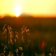 Beautiful Sunset ( Miniature Effect) - VideoHive Item for Sale