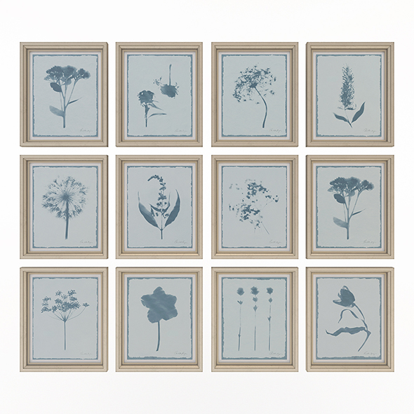 Charlotte Morgan Wild Meadow Flowers - 3DOcean Item for Sale