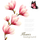 Nature Background with Blossom Branch of Pink Magnolia - GraphicRiver Item for Sale