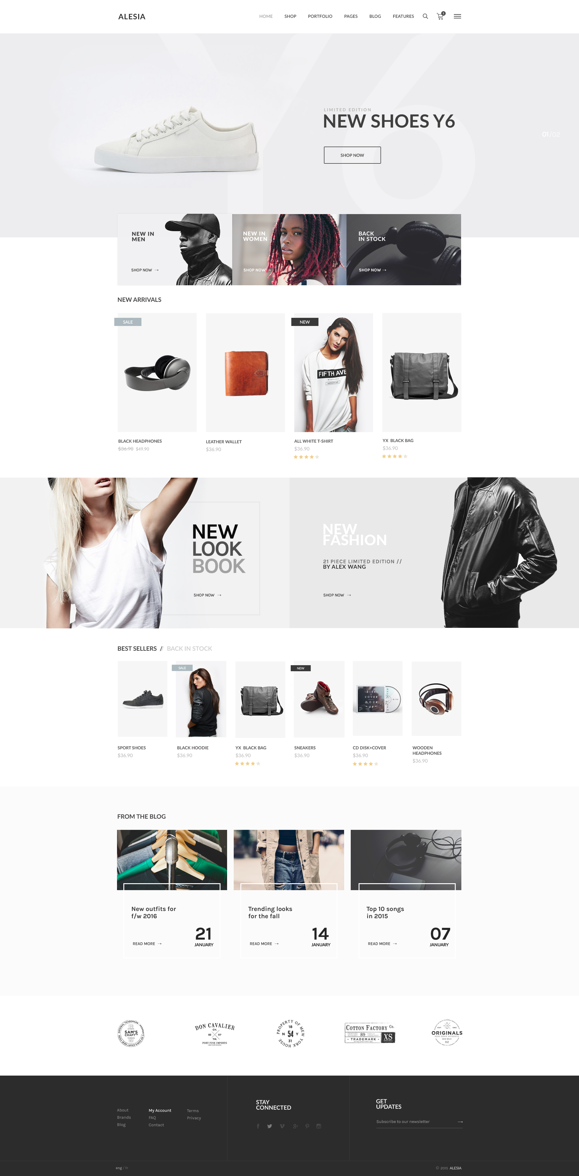 Alesia - Ecommerce HTML Responsive Template by ovicsoft   ThemeForest