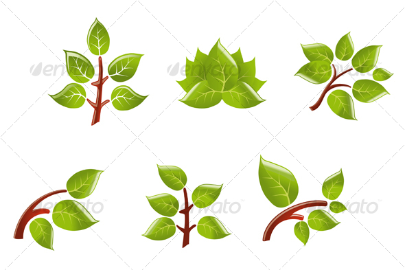 Leaves on branch - Decorative Vectors