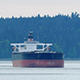 Large Tanker Ships In The Bay - VideoHive Item for Sale