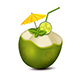 Cocktail in Coconut - GraphicRiver Item for Sale
