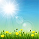 Summer Meadow - GraphicRiver Item for Sale