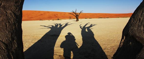 Namib%20desert 590x242