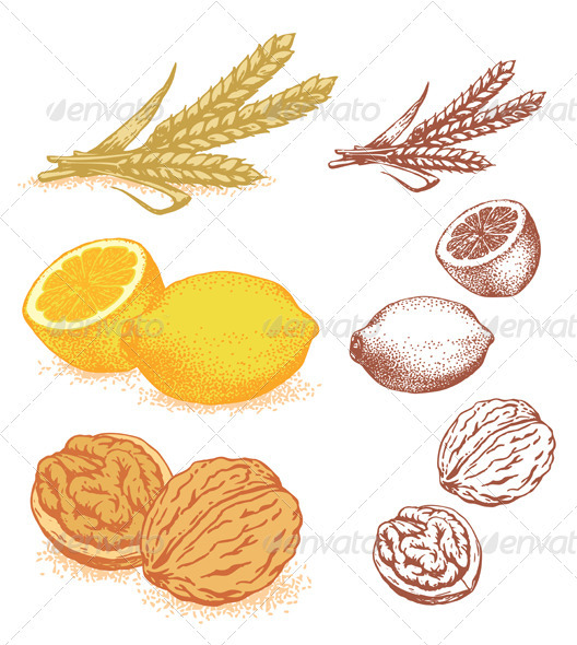 Grain, Lemons, Walnuts - Food Objects