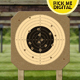 Target Shooting - VideoHive Item for Sale