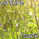 Nature Background - VideoHive Item for Sale