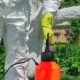 Gardener Using Pump Sprayer For Fertilizing Trees - VideoHive Item for Sale
