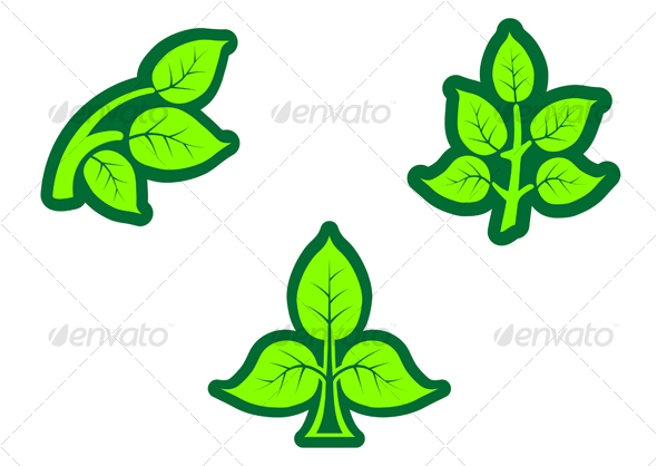 Green leaves - Decorative Vectors