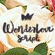 Wonderlove Doodle Sans & Script - GraphicRiver Item for Sale