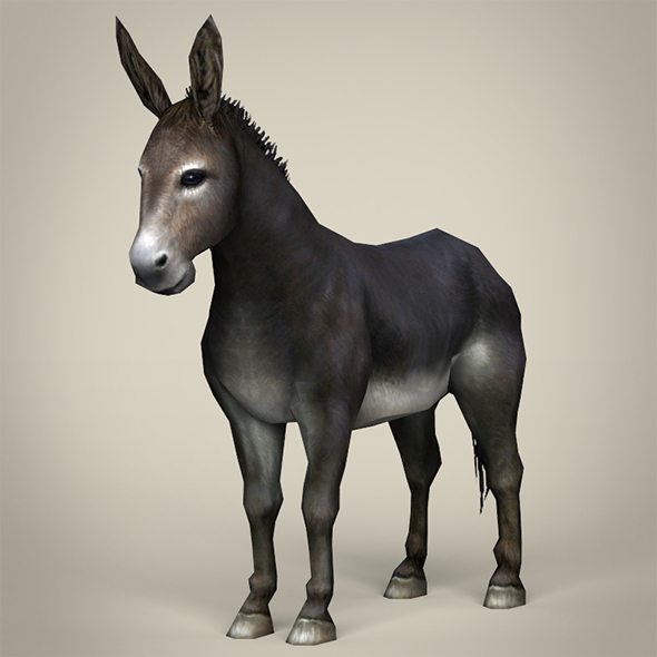 Game Ready Realistic Donkey - 3DOcean Item for Sale