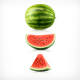 Watermelon Icons - GraphicRiver Item for Sale
