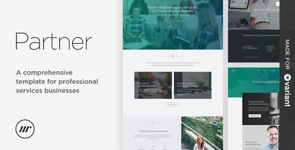 Partner accounting and law template with Variant Page Builder