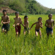 Poor Boys Running In Green Rice Field - VideoHive Item for Sale