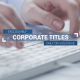 Corporate Titles and Lower Thirds Plus - VideoHive Item for Sale