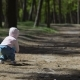 Child Are Playing With Ball In The Forest  - VideoHive Item for Sale
