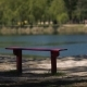 Benches In The Park By The Lakeside - VideoHive Item for Sale