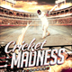 Cricket Madness - Flyer Template - GraphicRiver Item for Sale