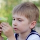 Young Little Boy Plays Games On Smartphone. Spring Park 3 - VideoHive Item for Sale