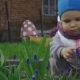 Little Baby Girl Smells a Blue Flower - VideoHive Item for Sale