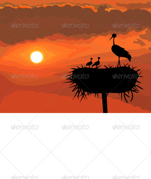 Vector Stork with Chicks - Landscapes Nature