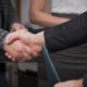 Business Handshake In The Office - VideoHive Item for Sale