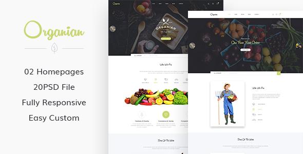 Organian – Organic Store PSD Template