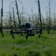 Lifting Drone In Blossom Field - VideoHive Item for Sale