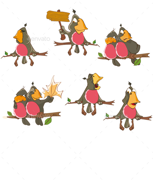 Set of Cute Parrots for You Design - Animals Characters