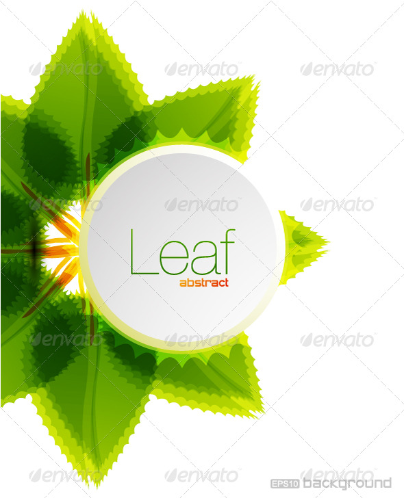 Leaf vector background design - Nature Conceptual
